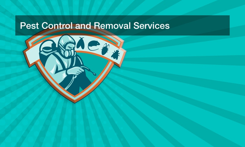 Pest Control and Removal Services