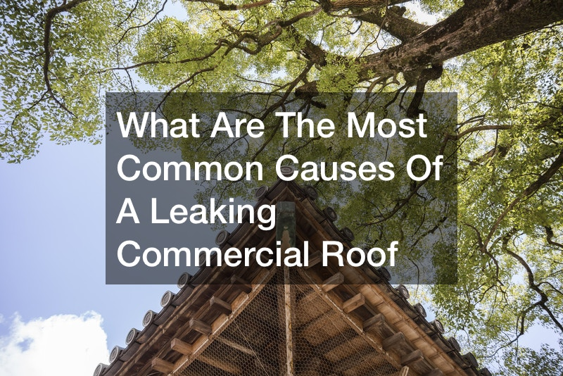 What Are the most Common Causes of a Leaking Commercial Roof
